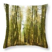 Betweenthe Trees Throw Pillow