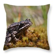 Beutiful Frog On The Moss Throw Pillow