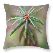 Beutifyl Rhododendron Throw Pillow