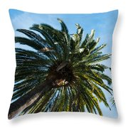 Beverly Palms Throw Pillow