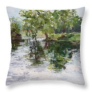Bevier Park In The Rain Throw Pillow