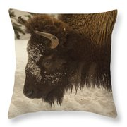Beware Of The Bison Throw Pillow