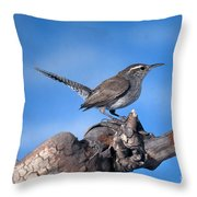 Bewicks Wren Throw Pillow