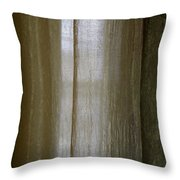 Beyond The Curtain Throw Pillow