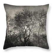 Beyond The Morning Throw Pillow