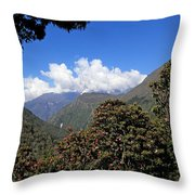 Beyond The Rhododendrons Throw Pillow