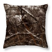 Beyond The Thicket - Abandoned Throw Pillow
