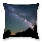 Beyond The Tree Tops Throw Pillow