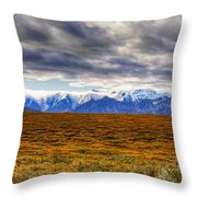 Beyond The Tundra Throw Pillow