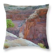 Beyond Time At Painted Rock Throw Pillow