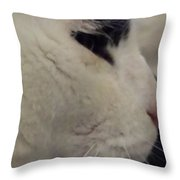 Bianconero Throw Pillow