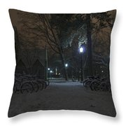 Bicycle Barnyard Throw Pillow