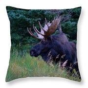 Big Bad John Throw Pillow