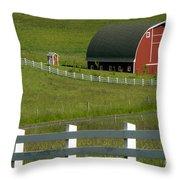 Big Barn Little Companion  Throw Pillow