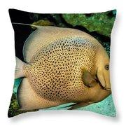 Big Beautiful Fish Throw Pillow