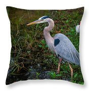 Big Blue And The Ibis Throw Pillow
