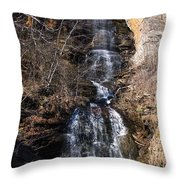 Big Bradley Falls 1 Throw Pillow