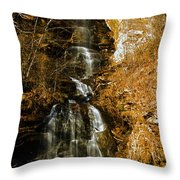 Big Bradley Falls 4 Throw Pillow