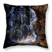 Big Bradley Falls 5 Throw Pillow