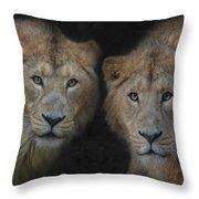 Big Brothers Throw Pillow
