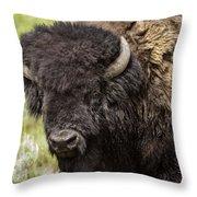 Big Bruiser Bison Throw Pillow