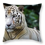 Big Cats 2 Throw Pillow