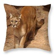 Big Cats Throw Pillow