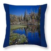 Big Cottonwood Canyon  Throw Pillow by Richard Cheski