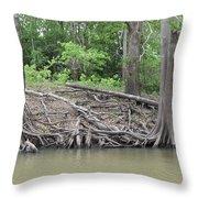 Big Cypress River Trees Throw Pillow