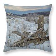 Big Delta Riverbed Throw Pillow