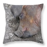 Big Dreamer Throw Pillow