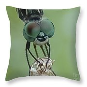 Big Eyes Throw Pillow