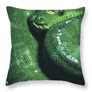 Big Green Eating Machine Throw Pillow
