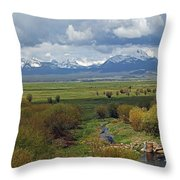 Big Hole Valley Throw Pillow