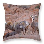 Big Horn Group Pose Throw Pillow