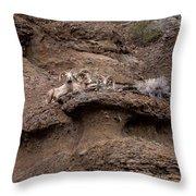 Big Horn Rams   #1486 Throw Pillow