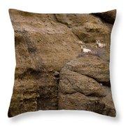 Big Horn Rams   #1546 Throw Pillow