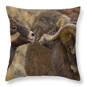 Big Horn Rams   #4989 - Signed Throw Pillow