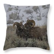 Big Horn Rams In The Snow   #2523 Throw Pillow