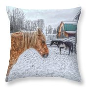 Big Horse  Little Horse Throw Pillow by Skye Ryan-Evans