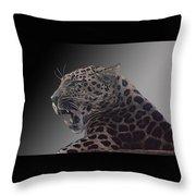 Big Kitty Kitty Throw Pillow