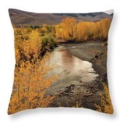 Big Lost River In Autumn Throw Pillow