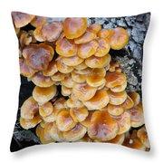 Big Mushrooms Family Throw Pillow