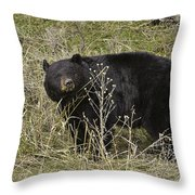 Big Ole Boy Throw Pillow