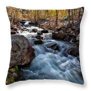 Big Pine Creek Throw Pillow by Cat Connor