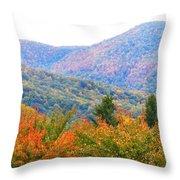Big Pisgah Mountain In The Fall Throw Pillow