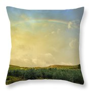 Big Rainbow Throw Pillow