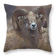 Big Rams Throw Pillow