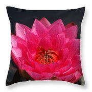 Big Red Glory Throw Pillow