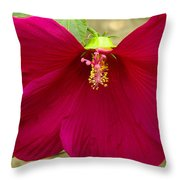 Big Red Hibiscus Bloom Throw Pillow